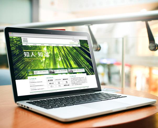 金融行业网站制作,北京网站制作公司-东浩联创提供
